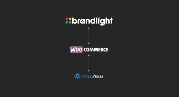 Open-Source-Entwicklung von WordPress und Woocommerce für Sicherheit, Geschwindigkeit und kontinuierliche Weiterentwicklung von Leistung, Funktionen und Workflow-Optimierung